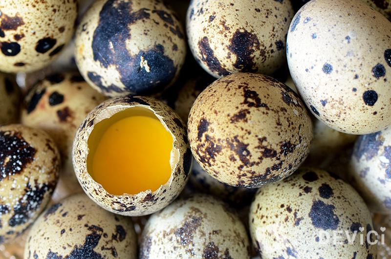 perepelinye-jajca-8