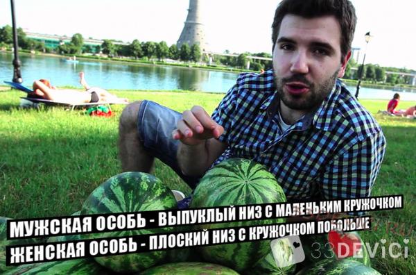 Как выбрать арбуз правильно