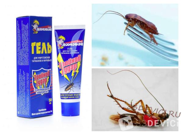Какие средства от тараканов бывают