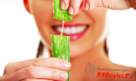 8 лечебных свойств алоэ
