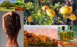 Аргановое масло или «Жидкое золото»