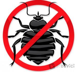 как избавиться от насекомых в квартире