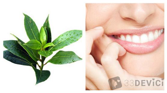 масло чайного дерева для зубов