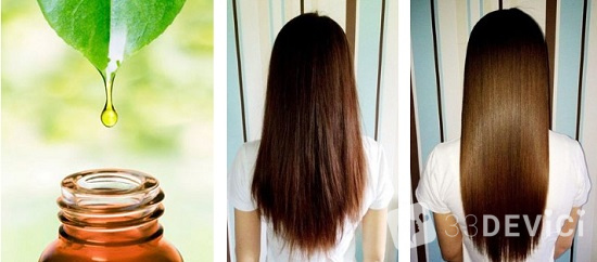лечение волос чайным деревом