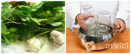 рецепты засолки огурцов