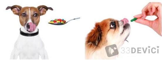 комплекс витаминов для животных