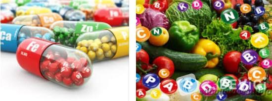 роль витаминов в организме животных