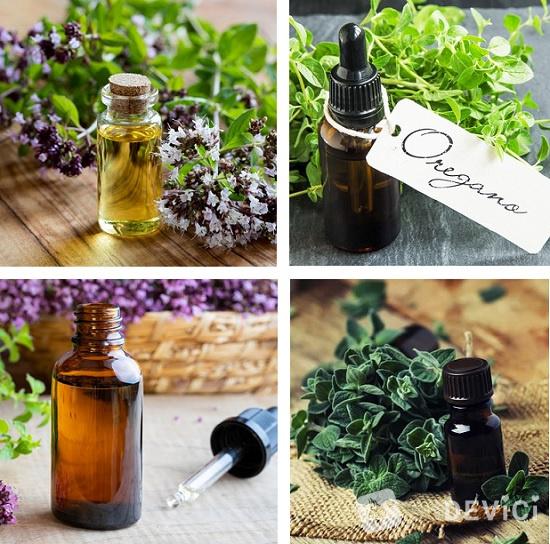 масло орегано свойства и применение