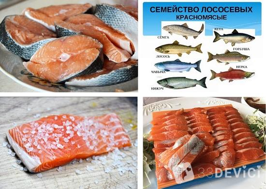 красная рыба названия видов