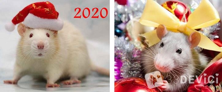 самый точный астрологический прогноз на 2020 год