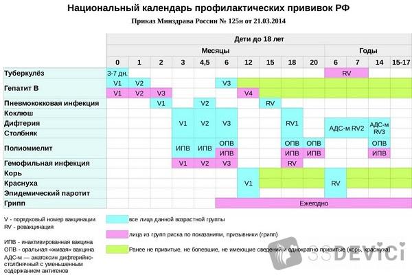 таблица детских прививок в России 2019